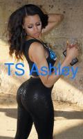 Ashley Profile, Escort in Chicago, +16026335891