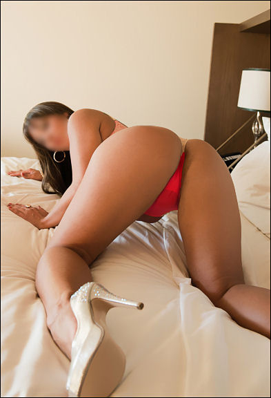 Jezebel Profile, Escort 323207-5634